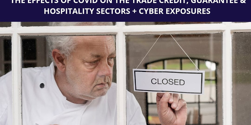 Effects of COVID on the Trade Credit, Guarantee & Hospitality Sectors + Cyber Exposures