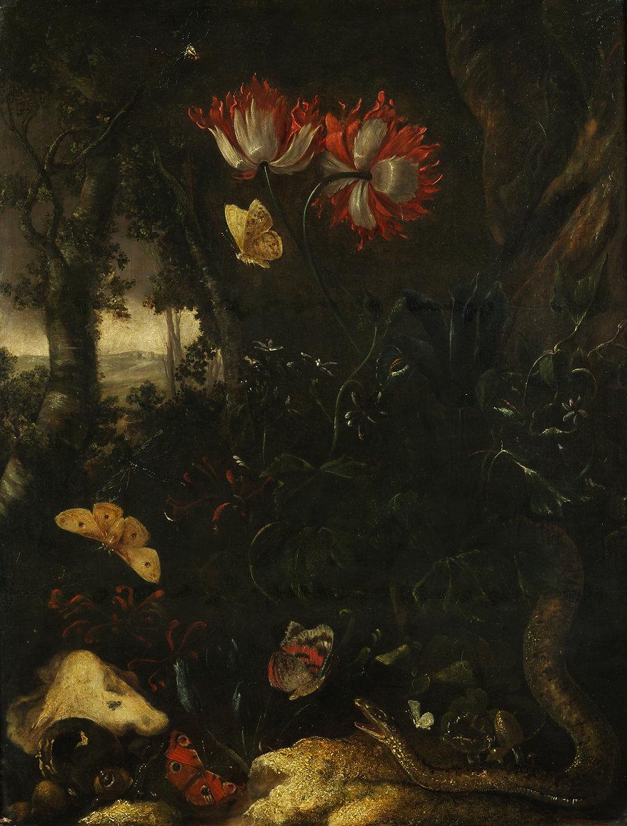 Otto_Marseus_van_Schrieck_-_Forest_still