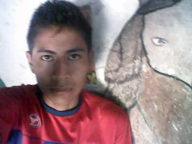 Leonel Castro Abarca