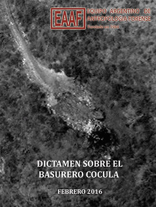 Dictamen-Basurero-Cocula-pdf-1.jpg