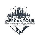 logo RICE_bleunuit-02-02.jpg
