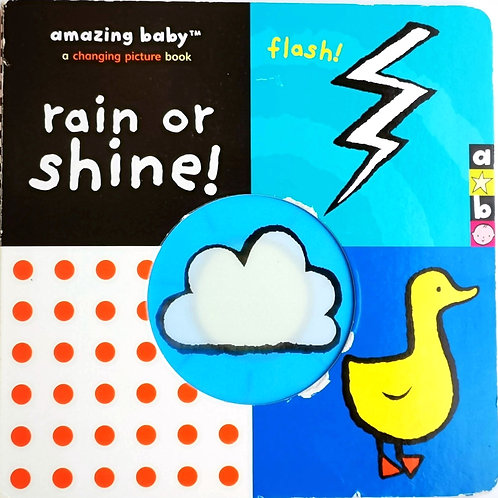 Rain or shine ! A picture changing book