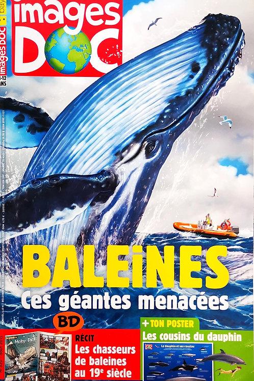 Images Doc, Baleines Ces géantes menacées