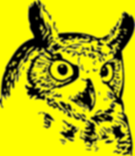 Ridgeway Owl.png