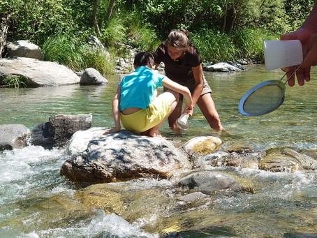 Nettoyons la rivière