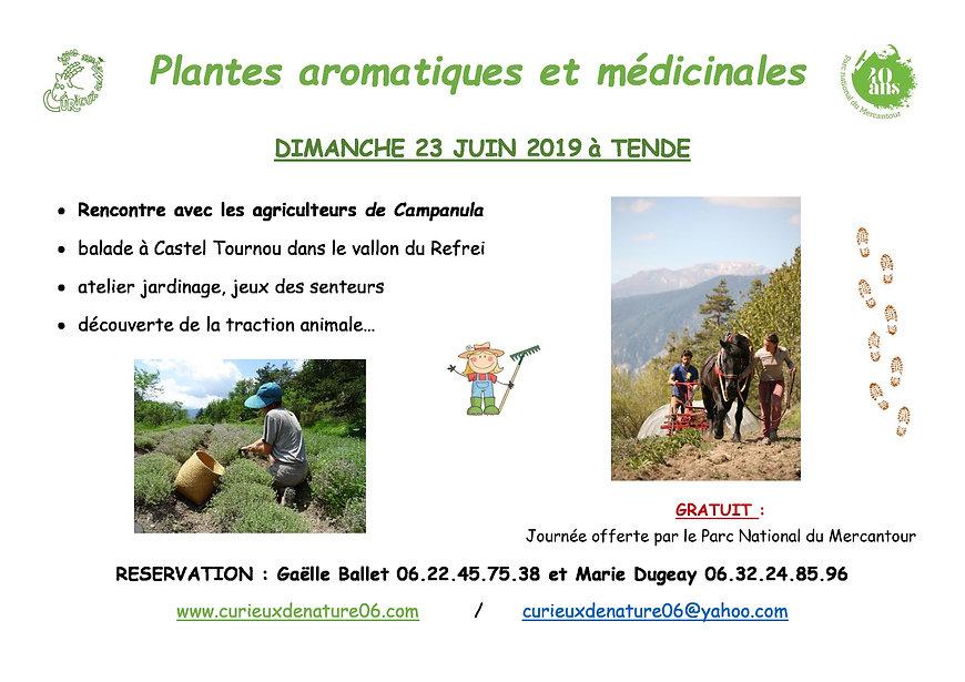 affiche-Plantes-aromatiques-et-médicinal
