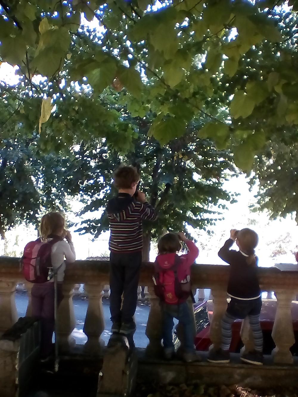 le premier mercredi des p'tits curieux de nature! Nous avons observé les oiseaux de Tende et avons répertorié les hirondelles qui nichent dans le village et ses alentours. Nous partagerons ces informations avec les gardes moniteurs du parc national du Mercantour. Début d'un partenariat pour protéger nos amies les hirondelles?§