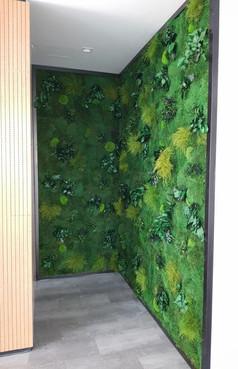Preserved Moss & Plants - RIT Dubai (2).
