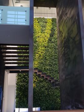 Sempergreen Living Green Wall - RIT Dubai