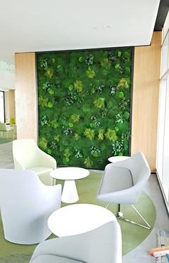 Preserved Moss & Plants - RIT Dubai (10)