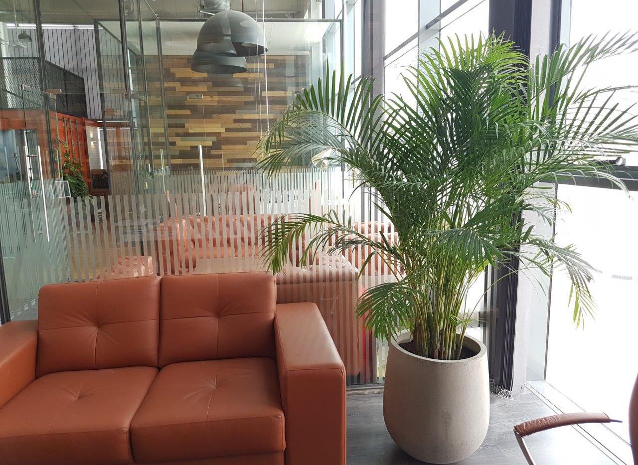 CUBE Interiors HO - Dubai
