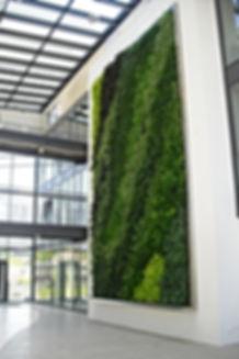 Plantdesign - gezond kantoor - verhoogde