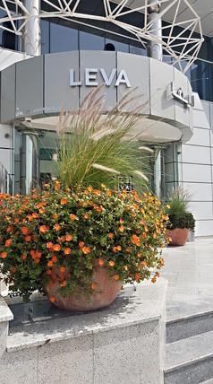 LEVA Hotel - Dubai