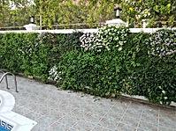 Private Villa LaMer - Dubai.jpg