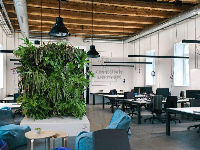 LifeMCC in Office