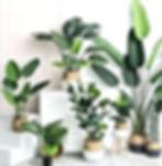artificial-plants-green-turtle-leaves-ga