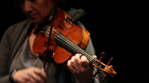 violin 2018 close up.png