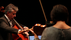 cello 2018 1.png