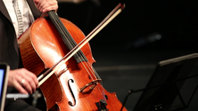 cello 2018 2.png