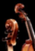 violins_2.png