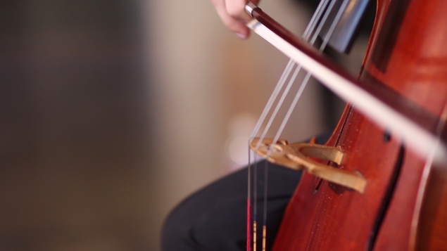 cello very close up.png