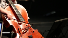 cello 2018.png