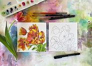 WCB_Tulips_Basic outline pen with 365_Andra Garvey.jpg