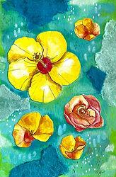 Garden Party_Final Yellow Card_Andrea Ga