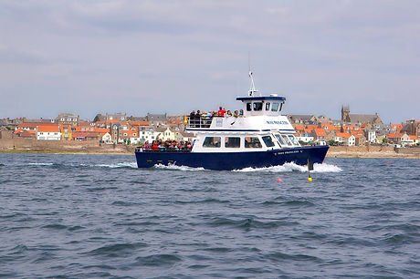 anstruther pleasure cruises.jpg