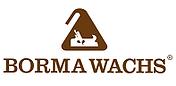 Реставрационные материалы из Италии Borma wachs