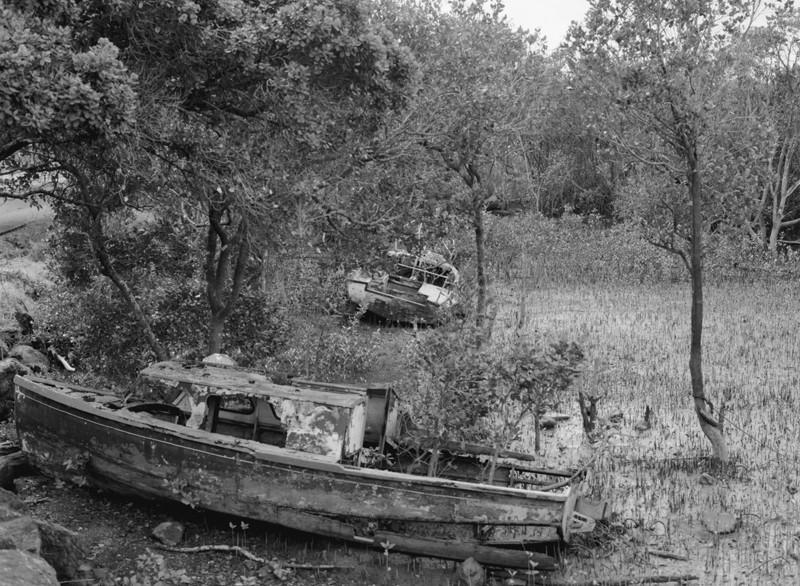 KohuKohu boats