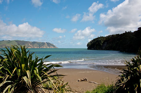 Manukau Heads Auckland NZ