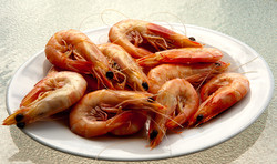 Beautiful local prawns