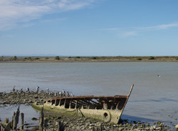 boat wreck at Wairau River Bar