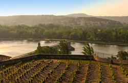 Pontd'Avignon