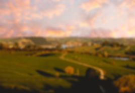 Tinopai Northland afternoon views
