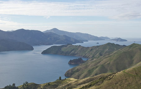 Marlborough Sounds, South Is NZ