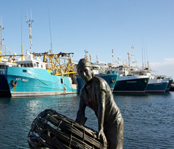 Fremantle Boat Harbour Trawlers