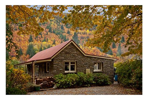 Autumn colours Alexandra
