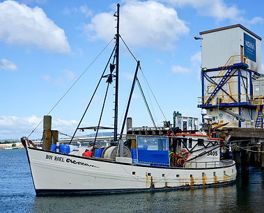 'Boy Roel' Trawler at Tauranga NZ