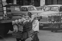 market days
