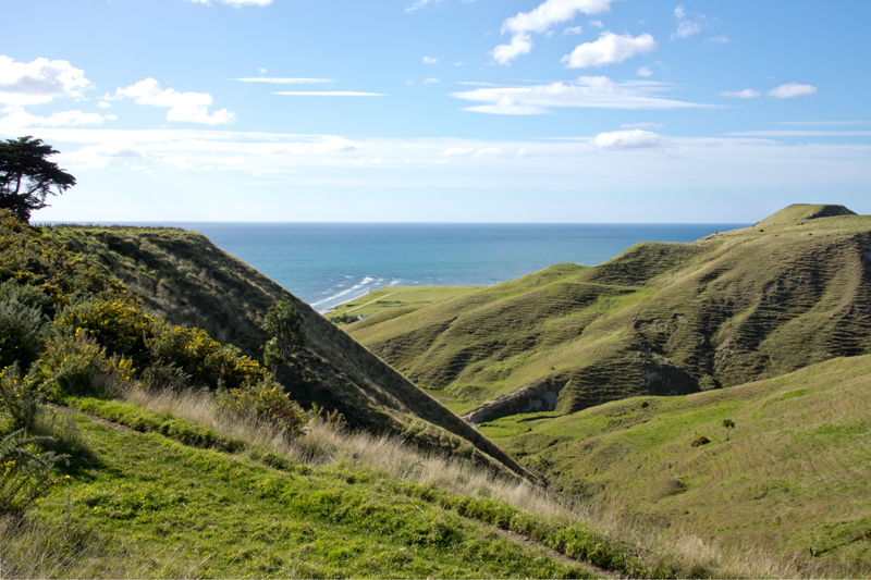 TableCapeMahia2NZ