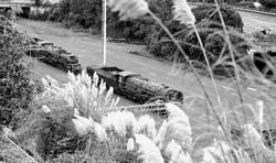 VintagelocomotivesattheAucklandyards