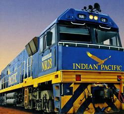 Indian Pacific NR locomotive