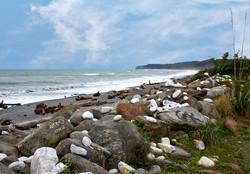 Bruce Bay West Coast