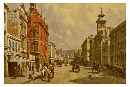 Alexander Donald Esq Queen Street Shop Auckland 1870s