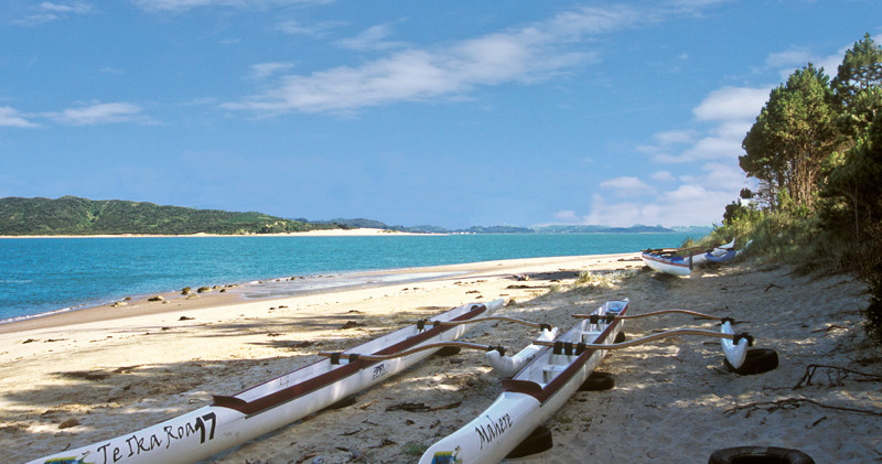 Opononi canoes on the beach