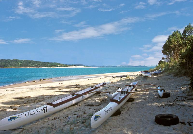 Opononi canoes on the beach