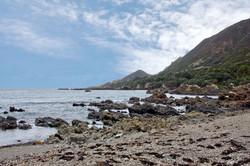 Eastland Cape-Runaway