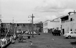 Produce Markets Ltd Fruit Dept 1950s